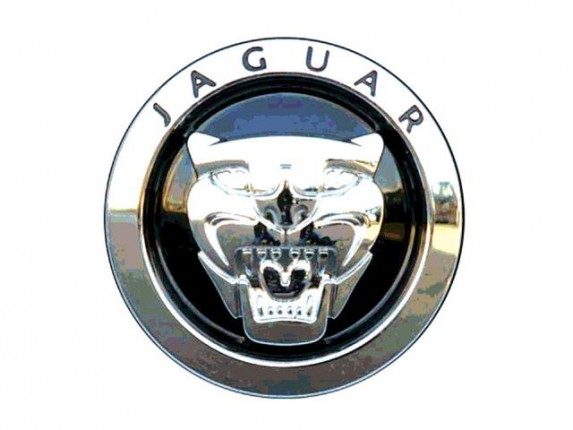Jaguar Logo On Car