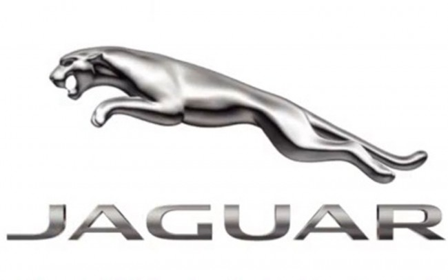 Jaguar Logo Photos